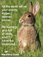 All the world will be your enemy, digger, listener, runner... Be cunning and full of tricks, and you will never be destroyed. (Watership Down)